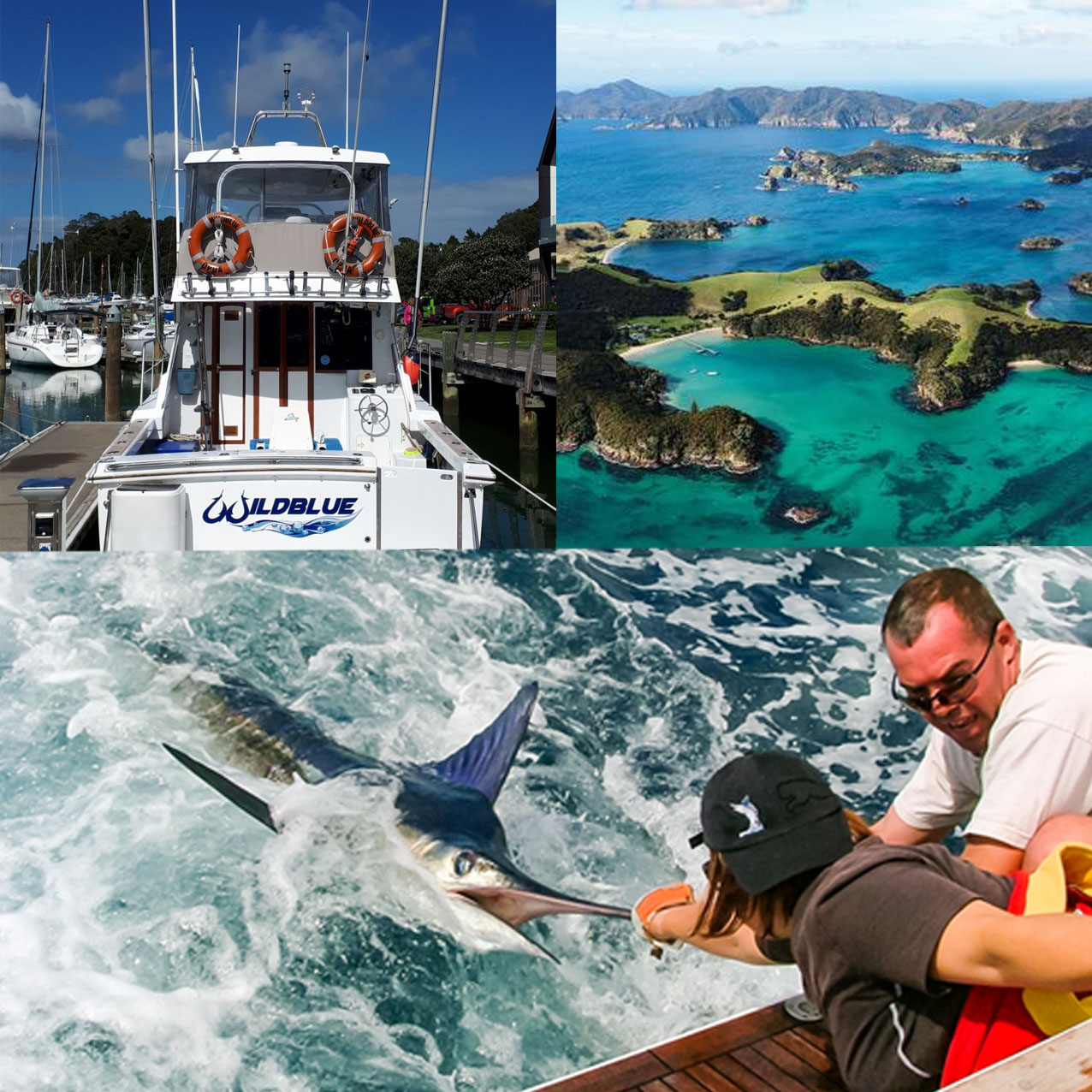 Fishing Bay of Islands 450