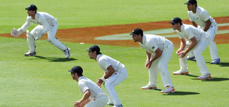 Sport - BLACKCAPS slips